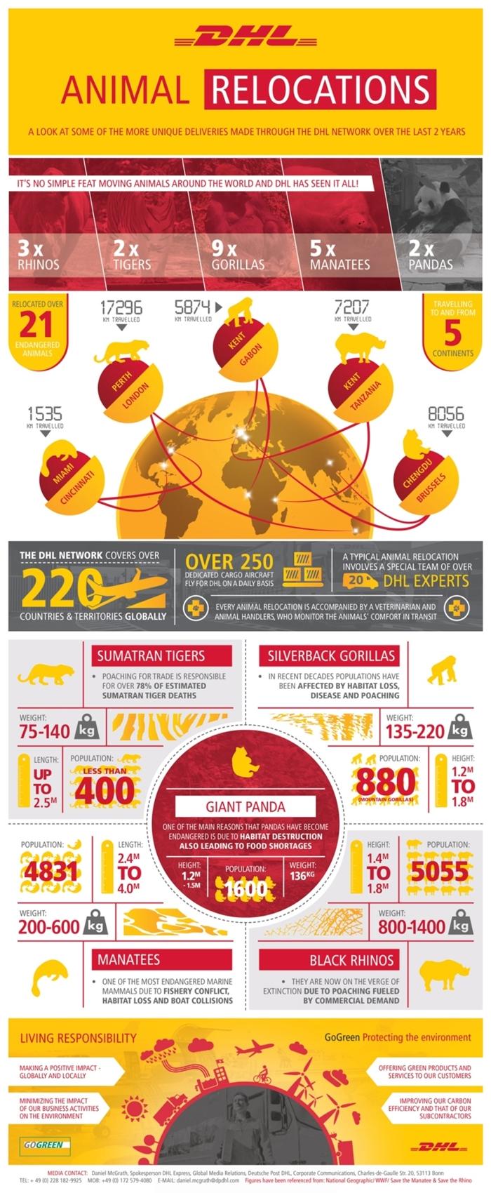 DHL_Pandas-infographic