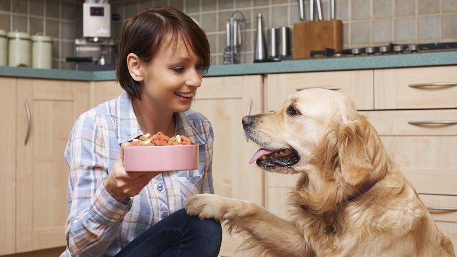 อาหารสัตว์เลี้ยง Pet Food