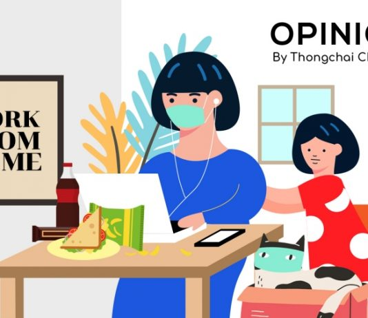 Work From Home Opinion