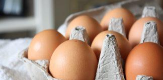 Egg ไข่ไก่