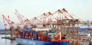 Cosco Shipping Container Port