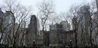 New York City COVID-19 Lockdown