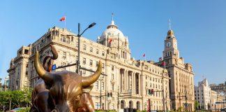 Shanghai Iron Bull