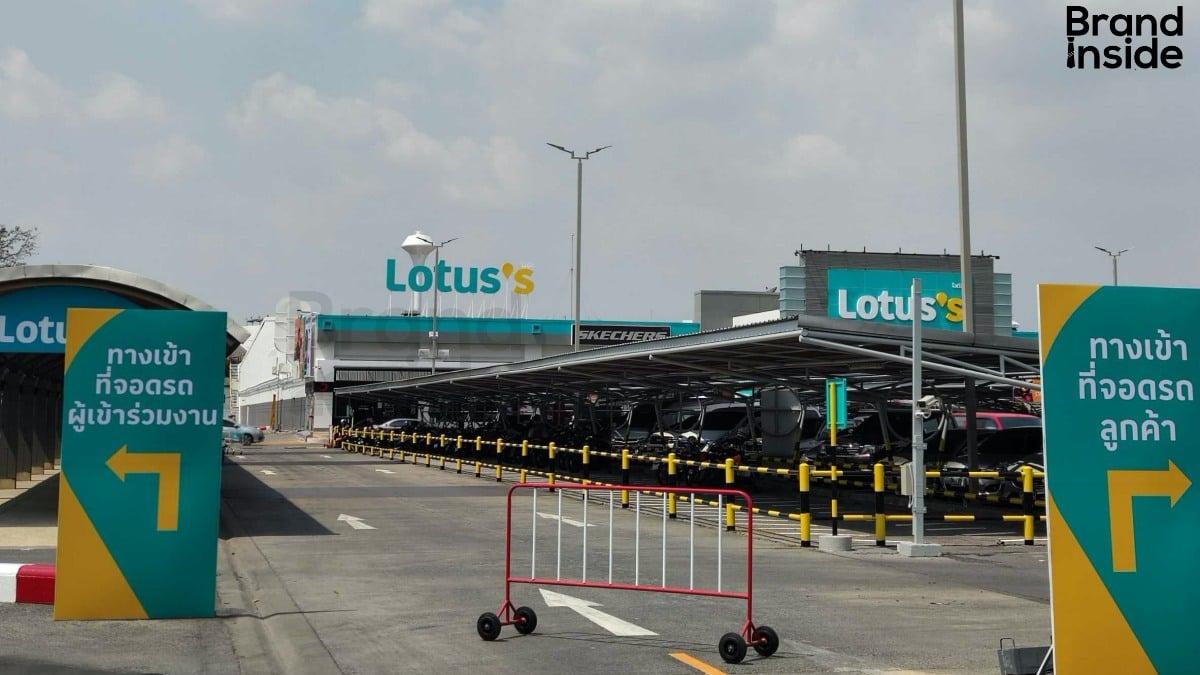 lotus's