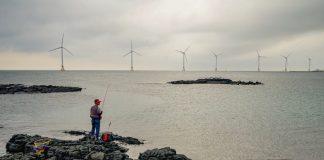 Wind Farm Jeju Island ฟาร์มกังหันลม เกาหลีใต้
